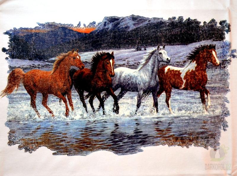Hlavní kategorie - Triko Koně voda bílá