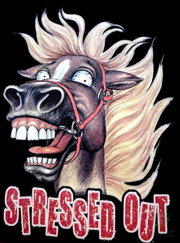 Hlavní kategorie - Triko Stressed out kůň černá