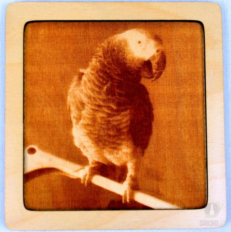 Hlavní kategorie - Dřevěný gravírovaný obrázek malý-papoušek-poslední kus!