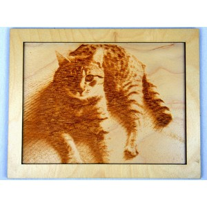 Dřevěný gravírovaný obrázek velký-kočka