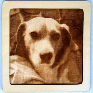 Dřevěný gravírovaný obrázek malý-labrador